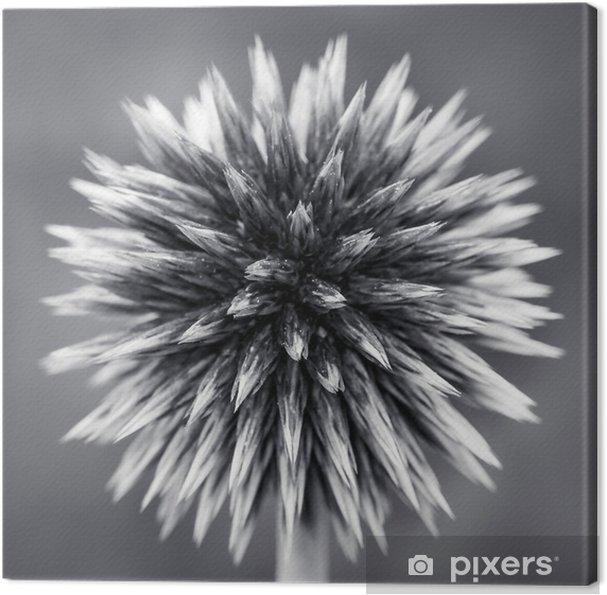 Quadro em Tela Roxo Globe Thistle B - Plantas e Flores
