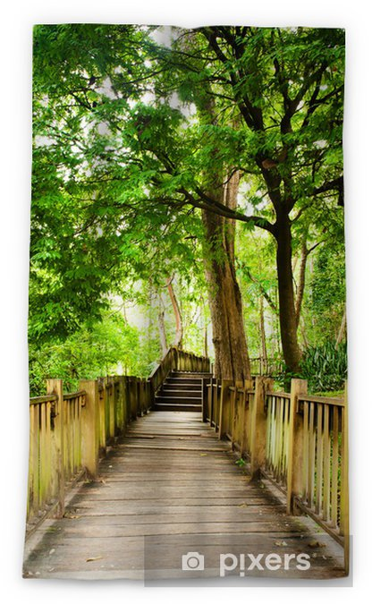 Rideau Occultant Stairway To Jungle Parc National Chiang Mai