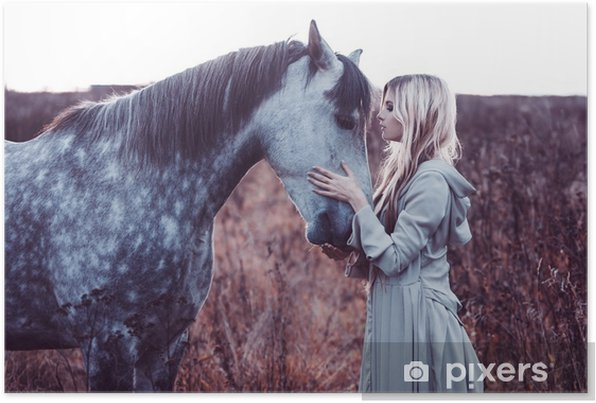 beauty blondie with horse in the field, effect of toning Self-Adhesive Poster - Lifestyle