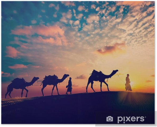 Two cameleers (camel drivers) with camels in dunes of desert Self-Adhesive Poster - Sports