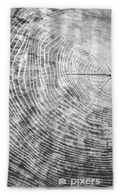 Black and white piece of wood with tree rings. Tree stump with annual rings as a wood pattern. Wood background texture or alpha channel.. Sheer Window Curtain - Plants and Flowers