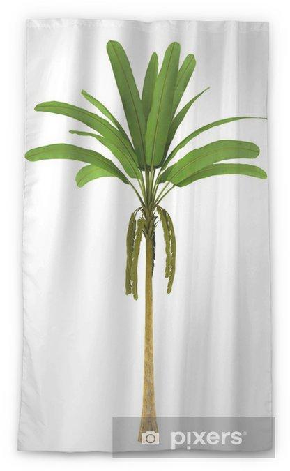 Wild Banana Palm Tree Isolated On White Background Sheer Window Curtain