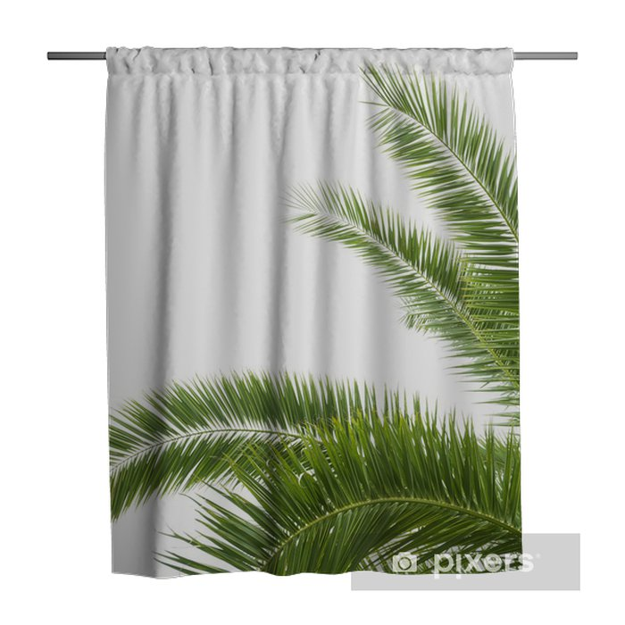 the palm tree shower curtain