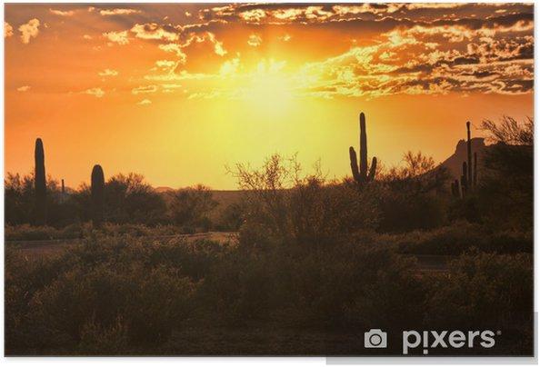 Självhäftande Poster Vacker solnedgång utsikt över Arizona öknen med kaktusar - Amerika