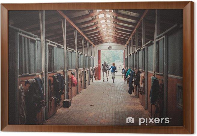 Tableau encadré Femme d'âge moyen avec son cheval dans une stalle - Personnes