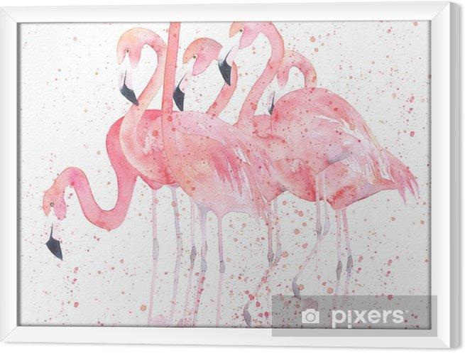Tableau encadré Flamants aquarelles avec splash. image de peinture - Animaux