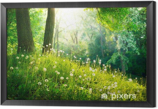 Tableau encadré Nature Printemps. Beau paysage. L'herbe verte et les arbres - Destin