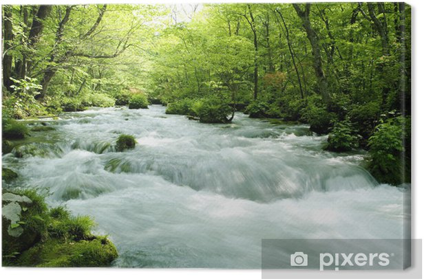 Tableau sur toile 新 緑 の 奥 入 瀬 渓 流 - Nature