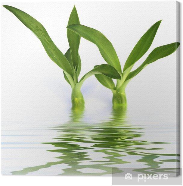 Tableau sur toile 2 ampoules Aloe - Plantes