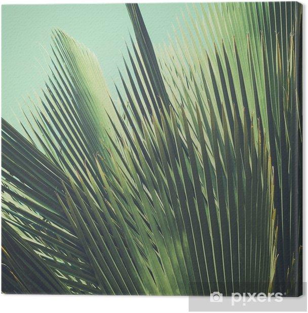 Tableau sur toile Abstract vintage background tropical. Feuilles de palmier dans la lumière du soleil. - Plantes et fleurs