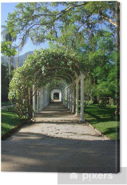 Tableau sur toile Allée couverte de feuillage, jardin, Rio de ...