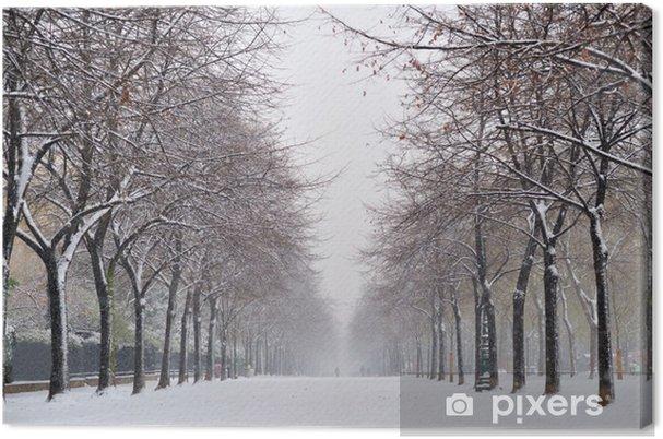 Tableau sur toile Allée d\'un Jardin publique sous la neige • Pixers ...