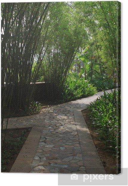 Tableau sur toile Allée de jardin en bambou • Pixers® - Nous vivons ...