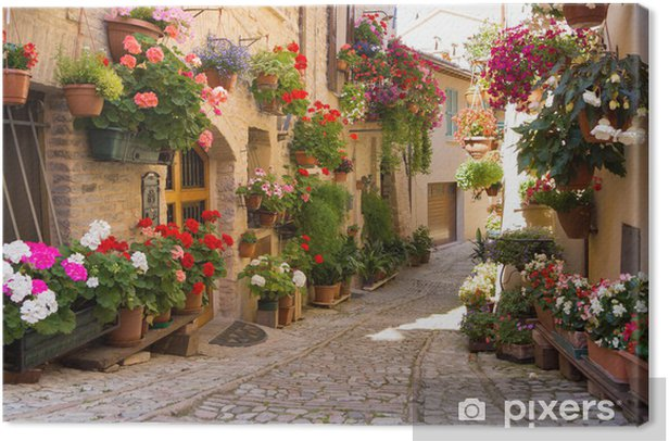 Tableau sur toile Alley avec des fleurs, Spello -