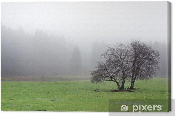 Tableau sur toile Arbre solitaire avec le brouillard - Campagne