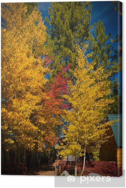 Tableau sur toile Arbres d automne - Amérique