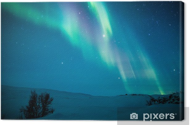 Tableau sur toile Aurores boréales (Aurora borealis) de neige au-dessus de - Thèmes