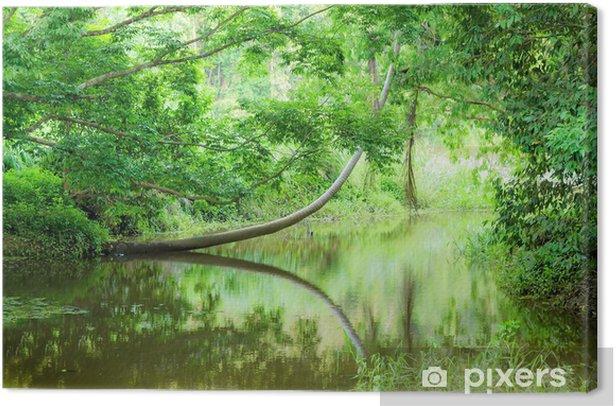 Tableau sur toile Australie tropicale - Thèmes