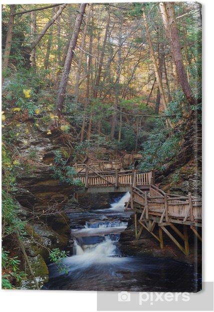 Tableau sur toile Automne ruisseau avec des sentiers de randonnée et feuillage - Saisons