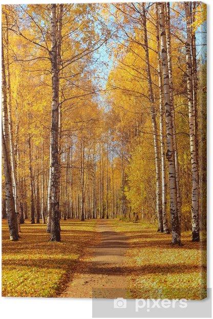 Tableau sur toile Autumn park - Saisons