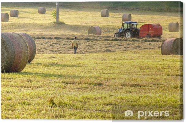 Tableau sur toile Ballots de paille et batteuse dans un champ de maïs - Agriculture