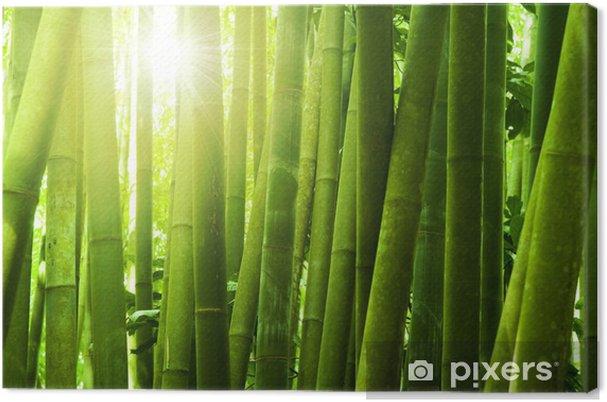 tableau sur toile bambou foret pixers nous vivons. Black Bedroom Furniture Sets. Home Design Ideas