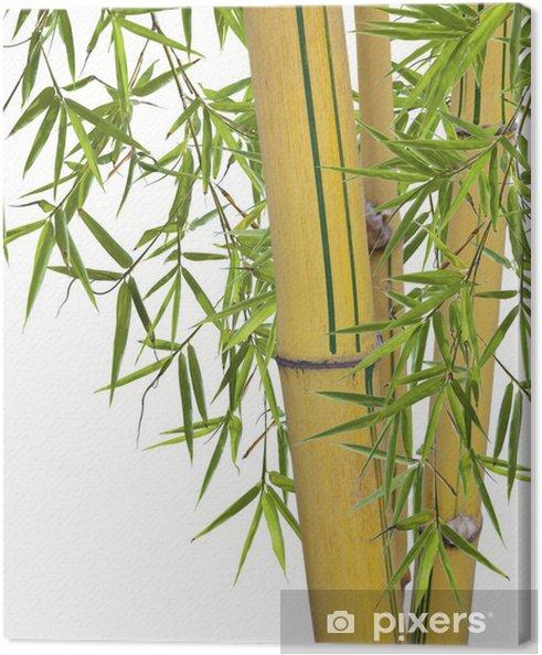 tableau sur toile bambou pixers nous vivons pour changer. Black Bedroom Furniture Sets. Home Design Ideas
