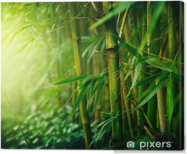 Tableau sur toile Bambou - Styles