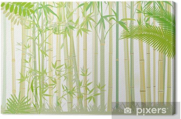 Tableau sur toile Bambuswald - Plantes