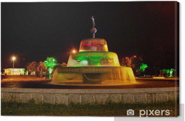 Tableau sur toile Batumi fontaine - Autres