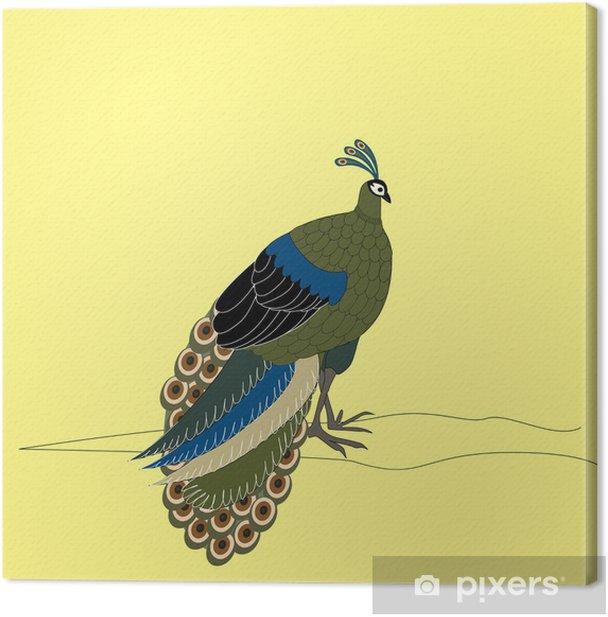 Tableau sur toile Beau paon - Oiseaux