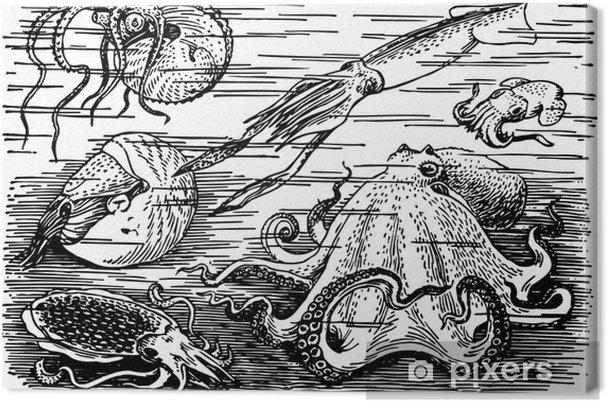 Tableau sur toile Beaucoup de différents animaux de la mer sous-marine - Animaux marins