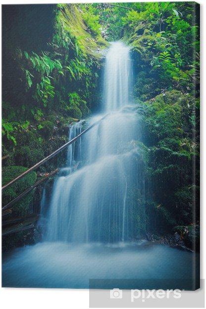 Tableau sur toile Belle cascade Lush à Hawaii - Thèmes