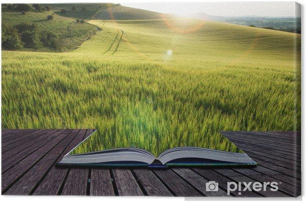 Tableau sur toile Belle champ de blé paysage en été plein soleil evenin - Autres sentiments