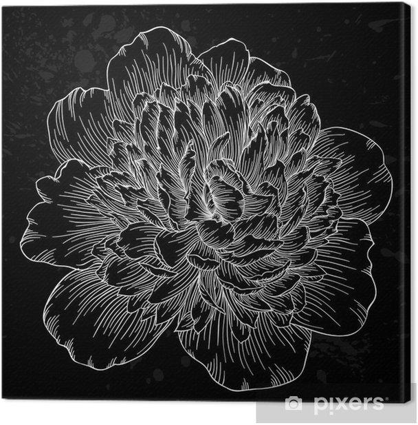 Tableau sur toile Belle fleur de pivoine noir et blanc isolé sur fond. lignes de contour et coups dessinée à la main. - Fleurs et plantes