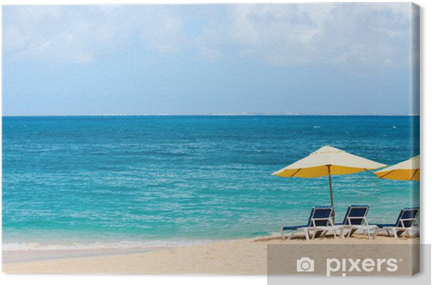 Tableau sur toile Belle plage des Caraïbes - Vacances