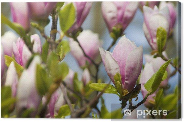 Tableau Sur Toile Belles Fleurs Roses Qui Poussent Sur Un Arbre Au