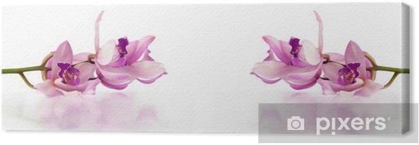 Tableau sur toile Belles orchidées pourpres reposant sur un fond blanc avec de l'eau - Religion