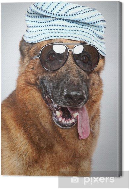 cd0203755b1ff Tableau sur toile Berger allemand dans des lunettes de soleil. Portrait  drôle