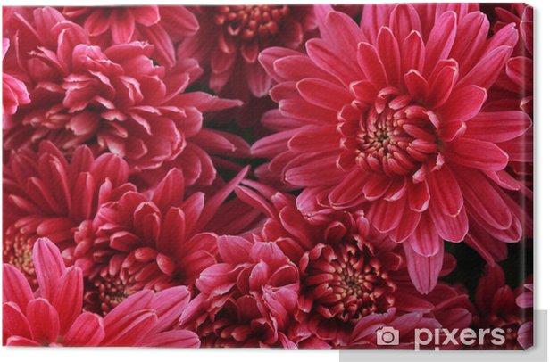 Tableau sur toile Bouquet de rose automne chrysanthème, près - Fleurs