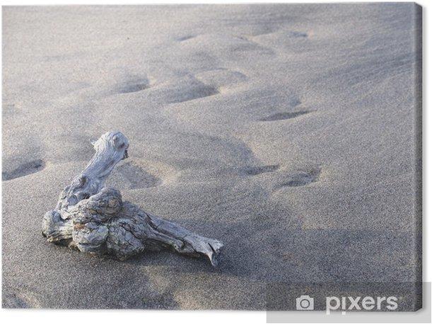 Tableau sur toile Branche sèche d'un arbre sur le sable - Textures