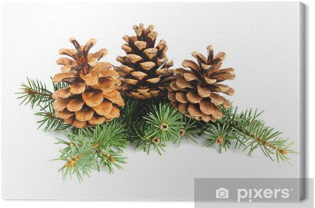 Tableau sur toile Branches de sapin avec des cônes isolés sur fond blanc - Fêtes internationales