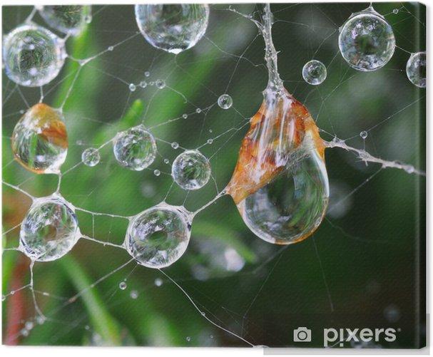 Tableau sur toile Brillant web - Fleurs