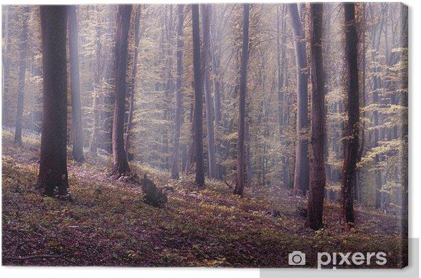 Tableau sur toile Brouillard dans la forêt - Forêt