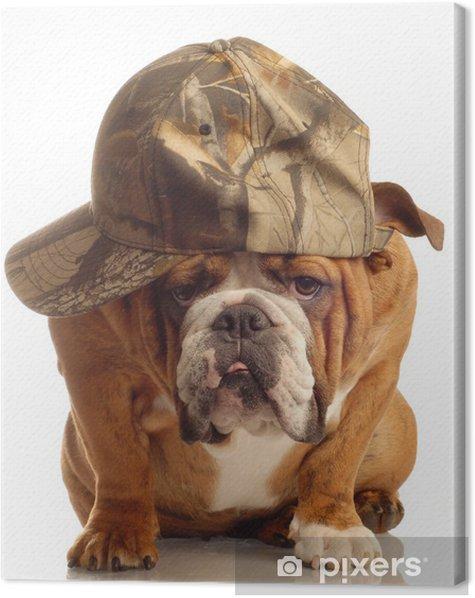 Tableau Sur Toile Bulldog Anglais Portant Une Casquette De Chasse Et D Expression Idiote Pixers Nous Vivons Pour Changer