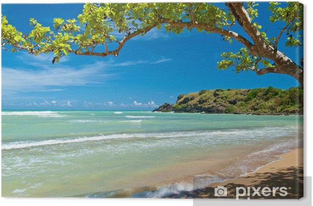 Tableau sur toile Caché plage, puerto rico - Thèmes