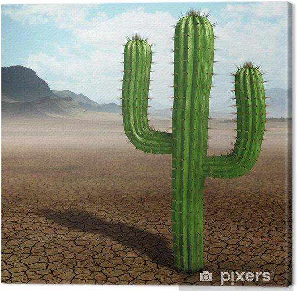 Tableau sur toile Cactus dans le désert. - Désert