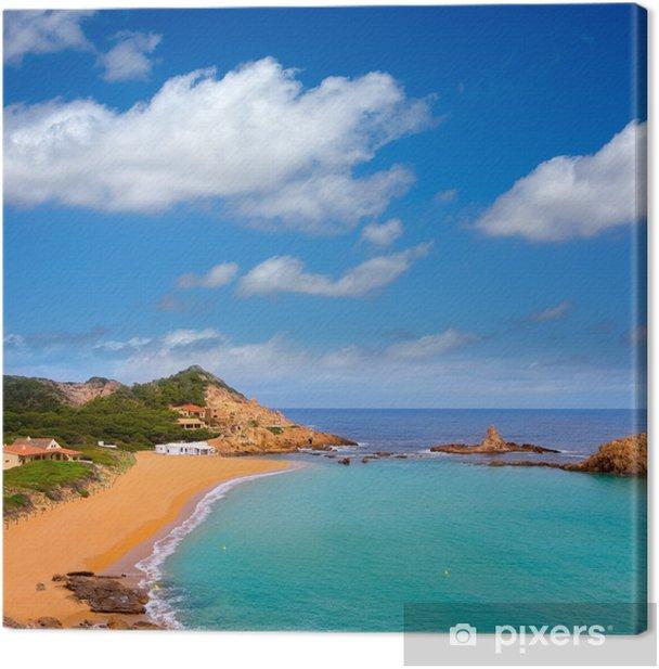 Tableau sur toile Cala Pregonda à Minorque dans les îles Baléares - Vacances