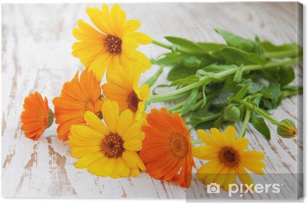 Tableau sur toile Calendula bouquet - Fleurs