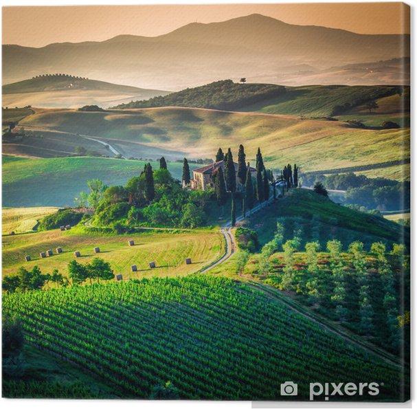 Tableau sur toile Campagne toscane - Prés, champs et l'herbes